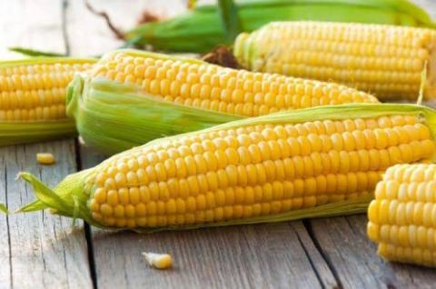 3 Jenis Sayuran Yang Tidak Boleh Dikonsumsi Berlebihan