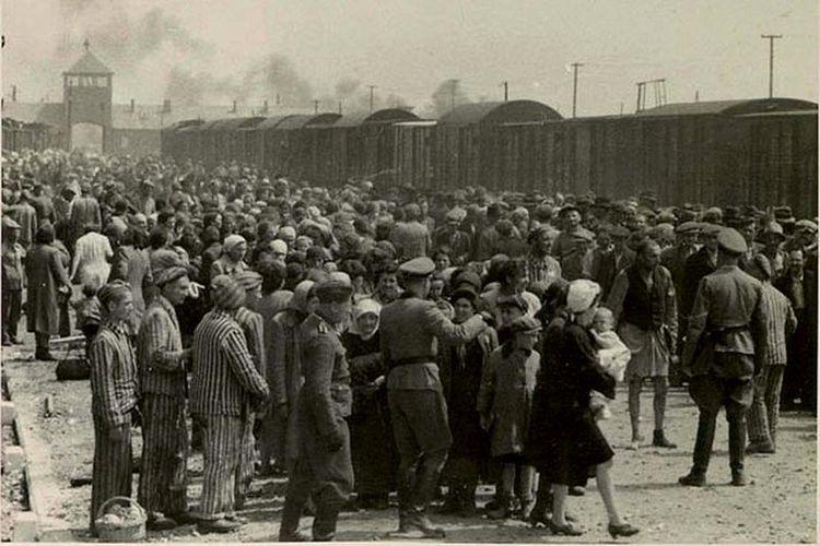 Biola Menjadi Penghibur Di Masa Holocaust Berlangsung